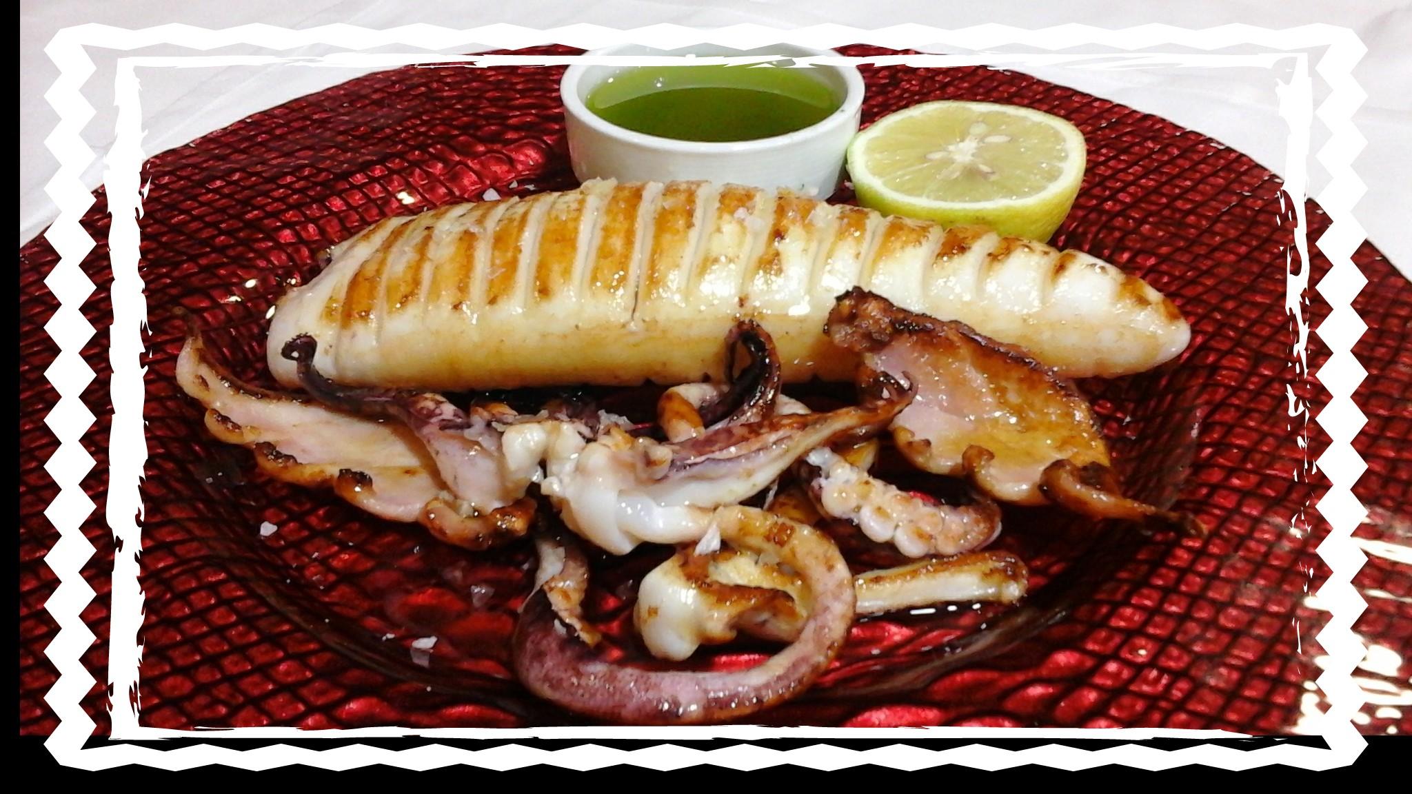 calamar  bahia